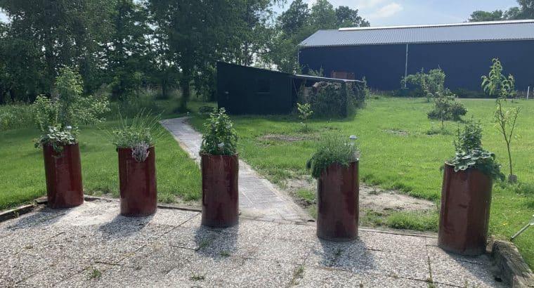 Boerderij in Oost-Groningen met grote tuin en loods Rustig, bij natuurgebieden en aan doorgaande vaarroute gelegen