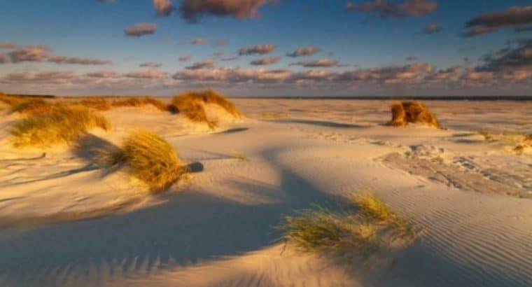Activiteitenclub Noord-Nederland voor 45+ singles